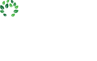 Licensed Child Care Network