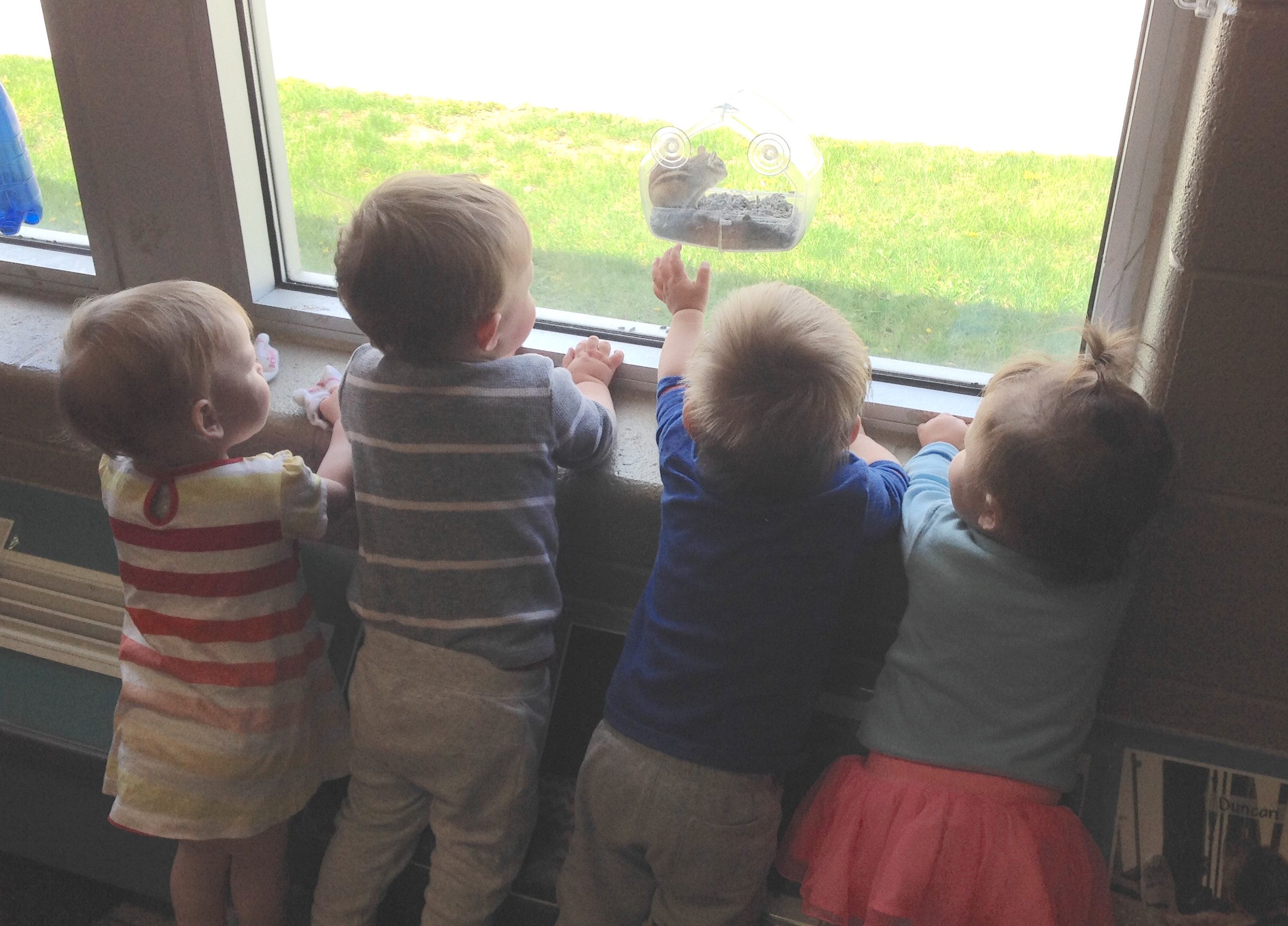 infants looking out of window at a chipmunk